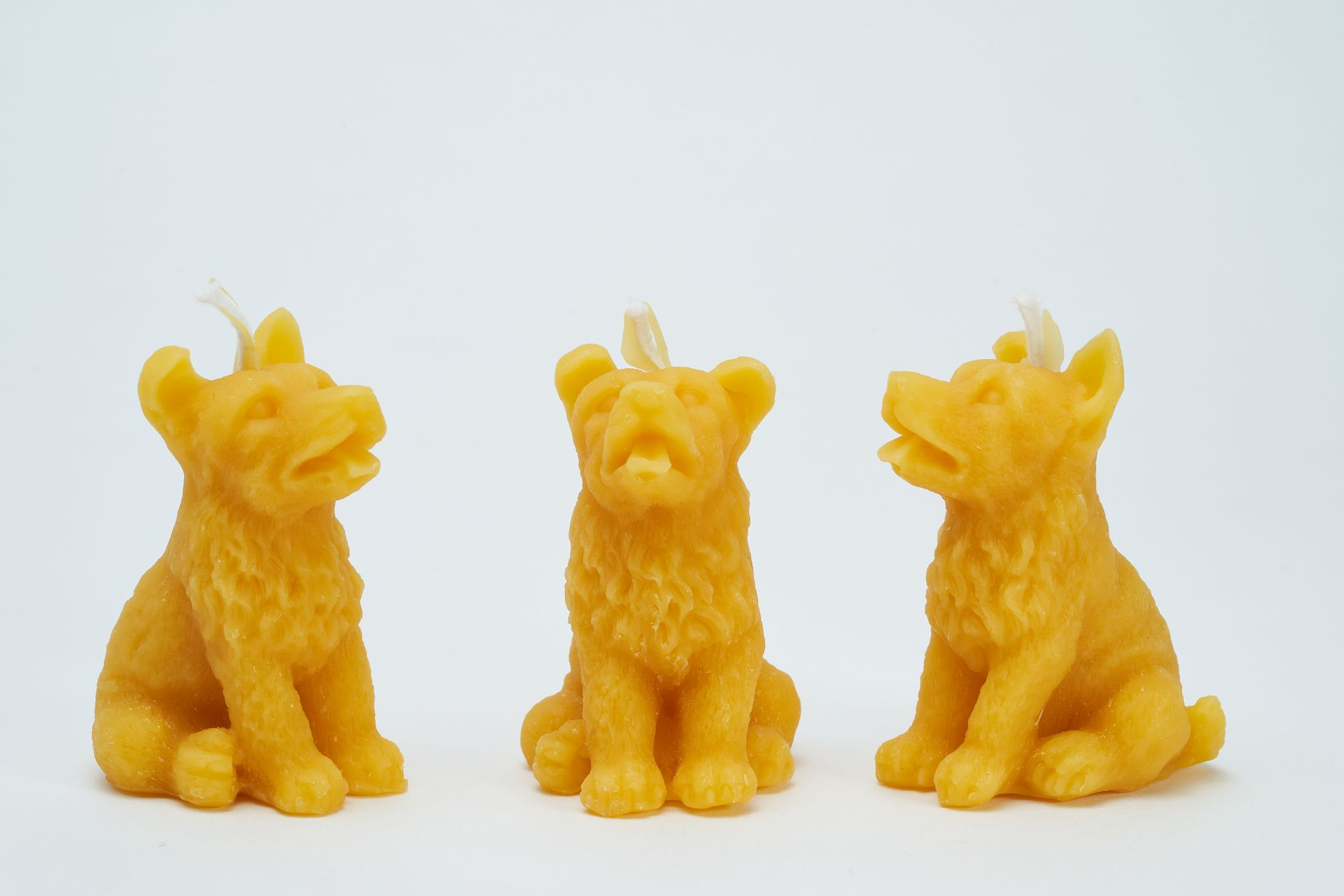 3x Kerze Motiv Hund (Höhe ca. 7cm) aus 100% Bienenwachs vom Imker