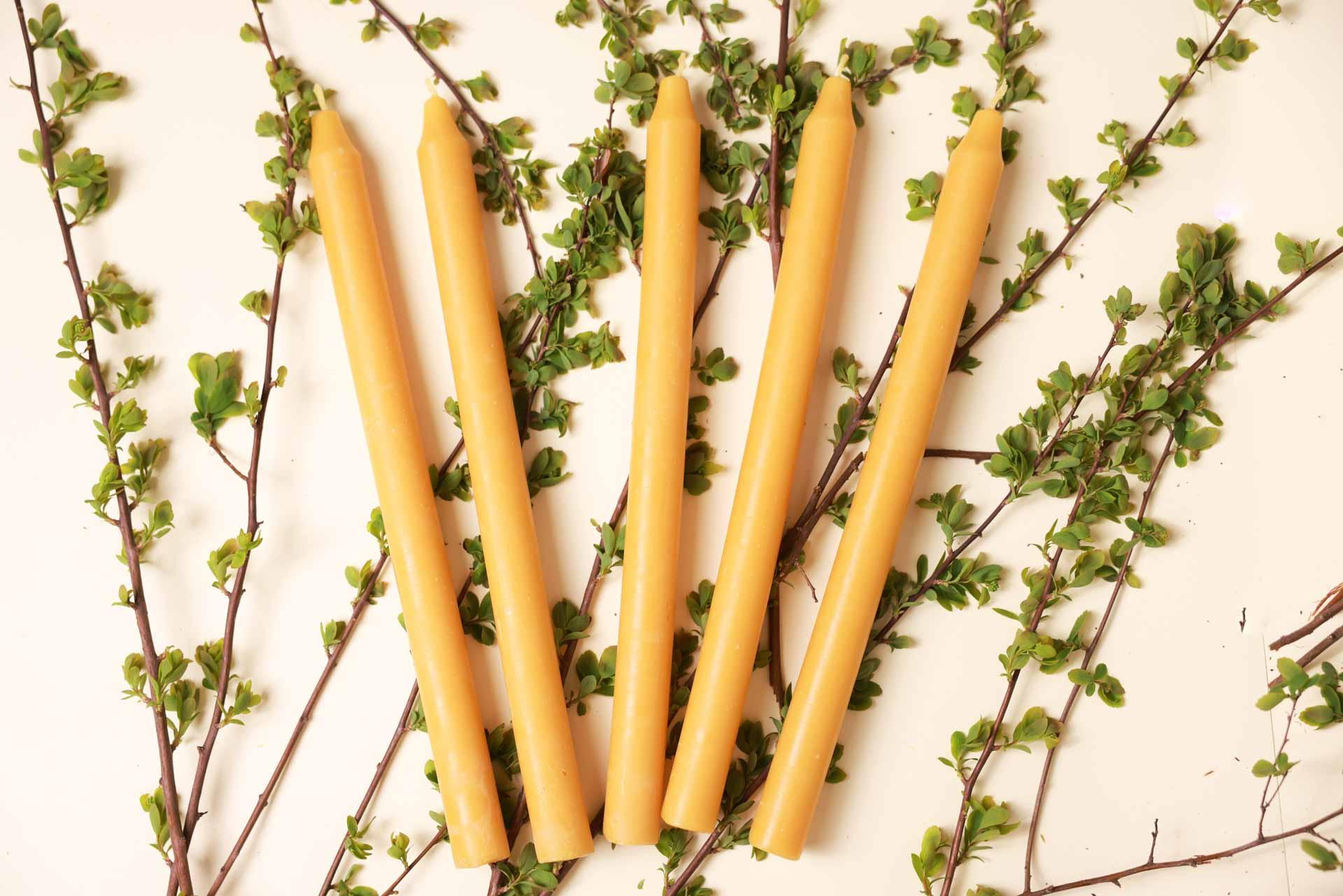 10 Stabkerzen lang - dünn (ca. 28cm x 2cm) aus 100% Bienenwachs vom Imker